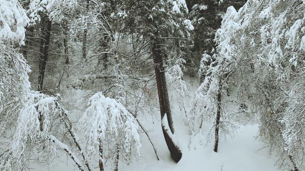 winter-is-coming-to-utah