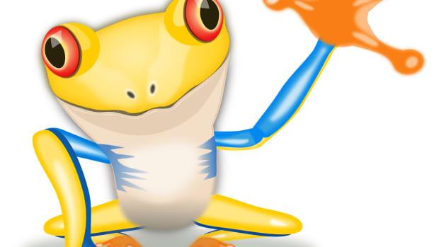 lets-learn-about-amphibians