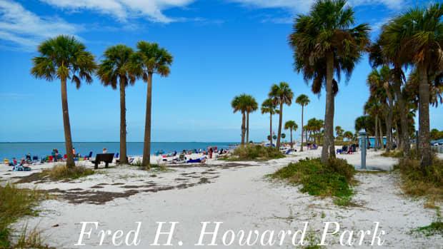 fred-howard-park-hidden-gem-of-floridas-gulf-coast
