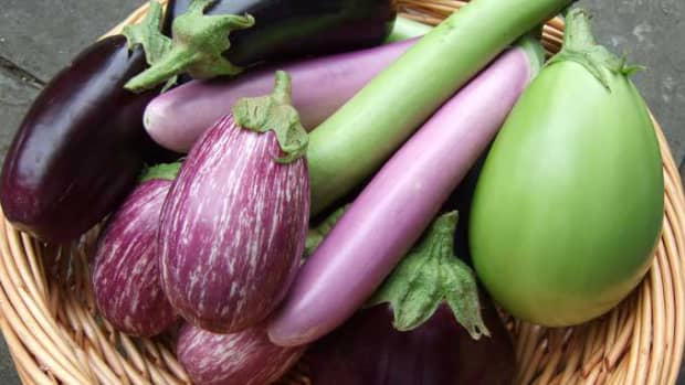 8-ways-to-cook-brinjal-in-andhra-style