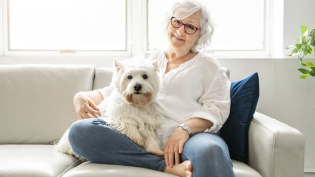 6-benefits-of-pets-for-seniors