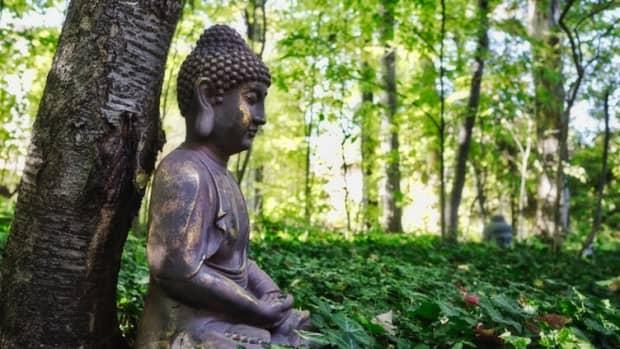 buddhist-tenets-to-combat-environmental-problems