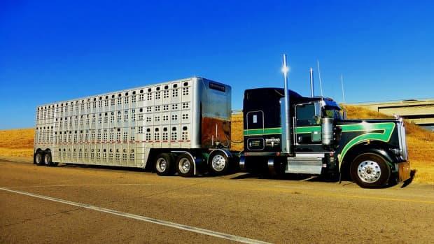 4-money-saving-tips-for-transport-businesses