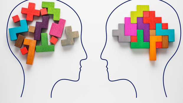 what-is-the-modular-theory-of-the-mind