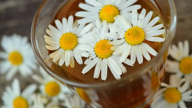 8-powerful-teas-to-end-insomnia-problems