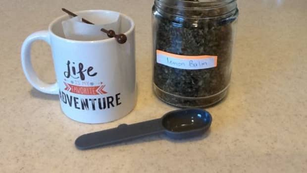 benefits-of-drinking-lemon-balm-tea