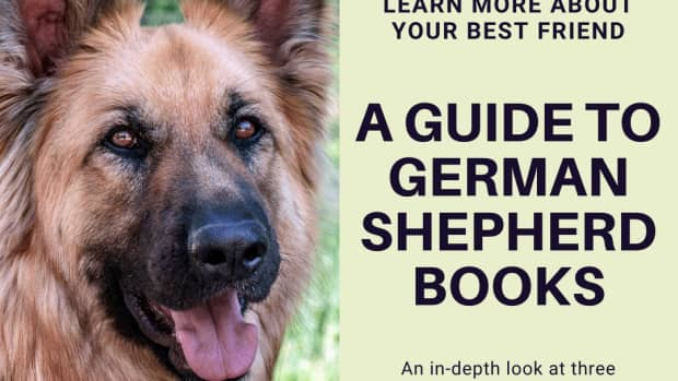 3-excellent-books-for-german-shepherd-owners