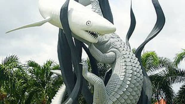 In local dialect the word 'Sura' means shark and 'baya' means crocodile. It is local legend that these two beasts fought for supremacy.