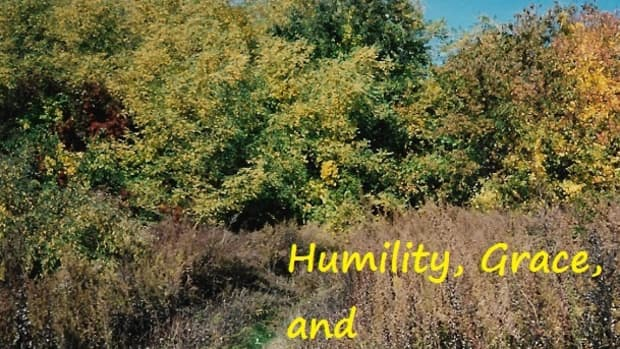 humility-grace-and-silent-gratitude