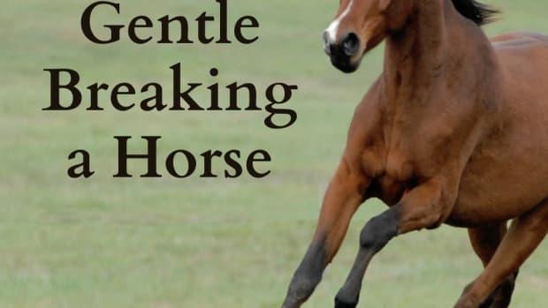 training-is-gentle-breaking-better