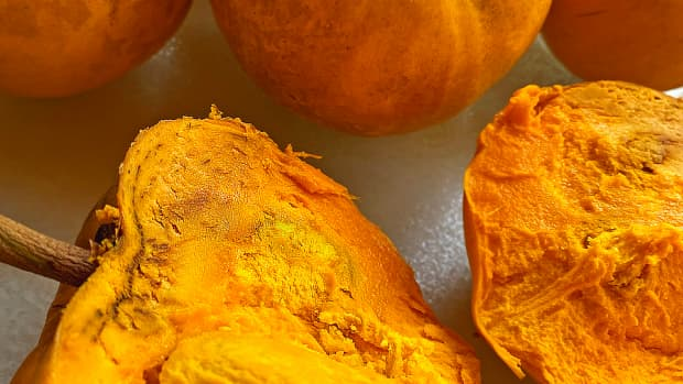 a-tropical-taste-of-hawaii-eggfruit