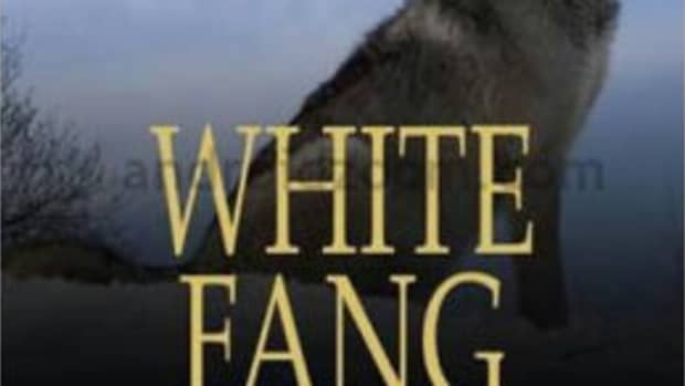 londons-white-fang-and-the-problem-of-pain