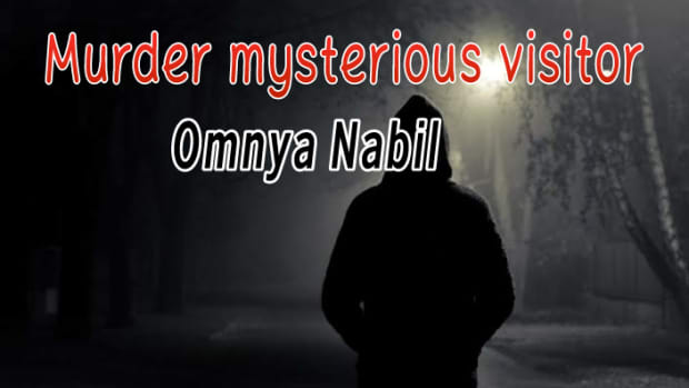 murder-the-mysterious-visitor2
