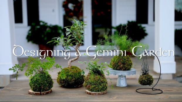 how-to-design-your-garden-like-a-gemini