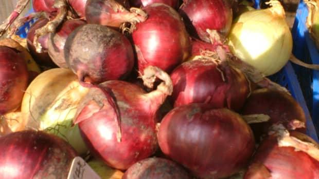 grow-winter-onions-tips