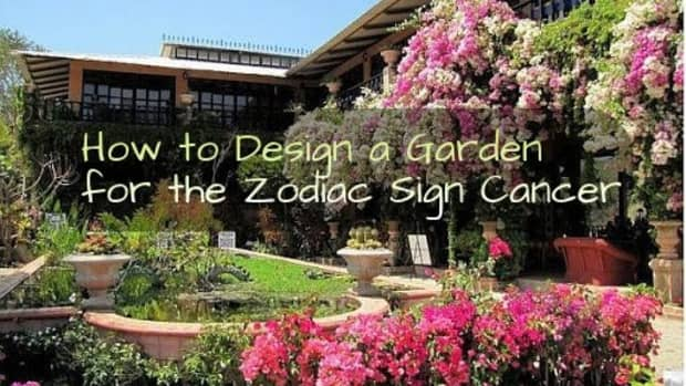 how-to-design-your-garden-like-the-zodiac-sign-cancer