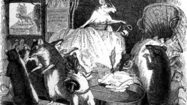 queen-rat