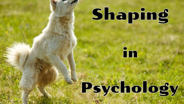 shaping-psychology-behavior-modification-operant-conditioning-aba