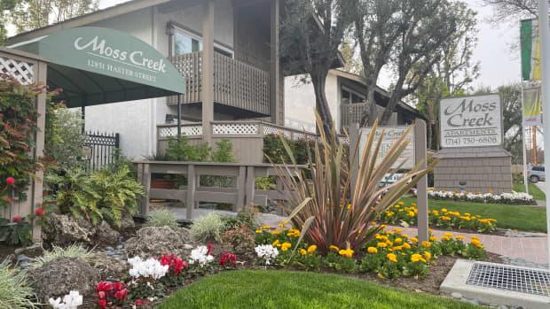 the-tale-of-the-phallic-hoodlum-of-moss-creek-apartments