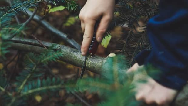 3-must-know-survival-skills-to-keep-you-alive-in-the-wilderness