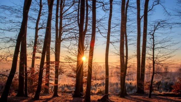 season-of-light