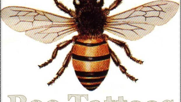 bee-tattoos-design-ideas-and-meaning