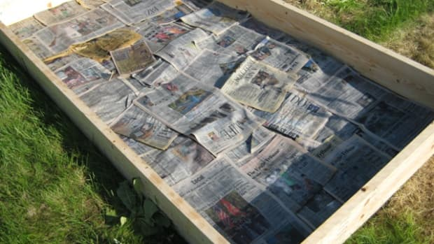 make-a-new-garden-bed-with-sheet-mulching