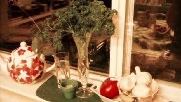 parsley-garnish-perks-up-a-plate