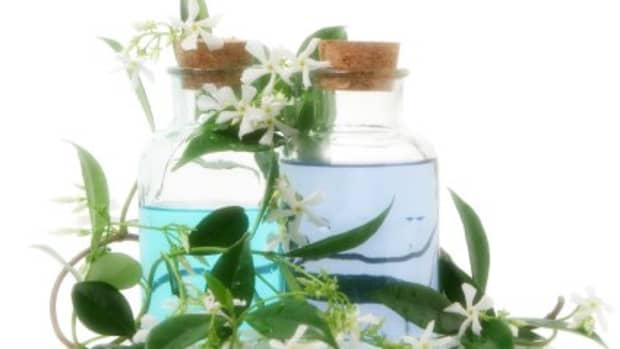are-organic-essential-oils-superior-to-non-organic-oils