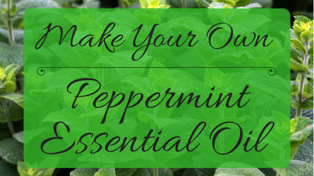 how-to-make-your-own-peppermint-essential-oil