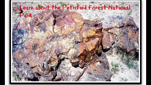 arizona-national-park-petrified-forest-desert-pictures-amazing