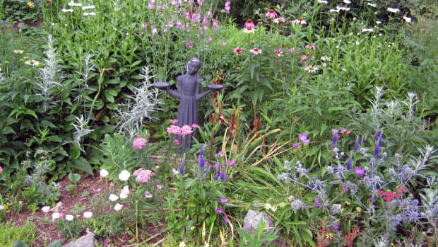 keepperennialflowersbloomingfrommarchuntilnovemberinatemperate-climate
