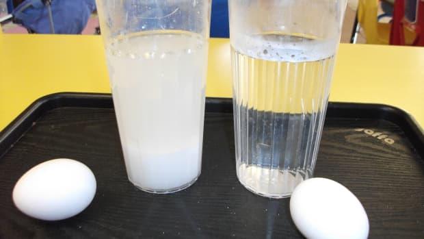egg-tremelyfunandeasyeggexperiments