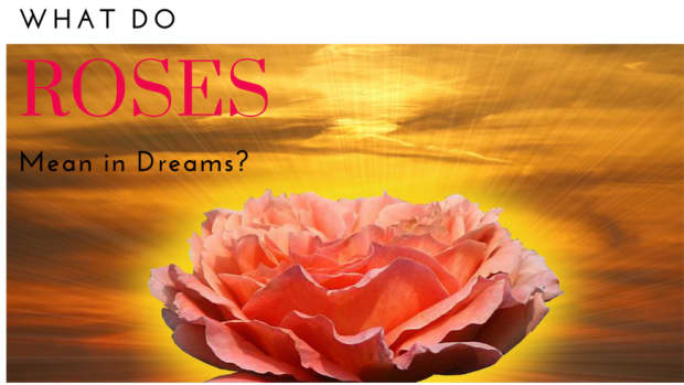 what-do-roses-mean-in-dreams
