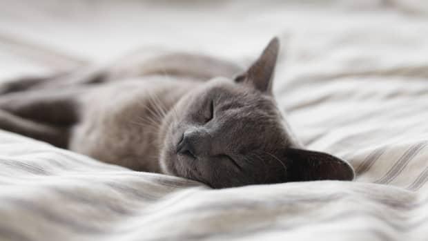 5-habits-for-good-sleep