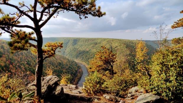 tank-hollow-vista-hike-to-pennsylvanias-most-beautiful-view