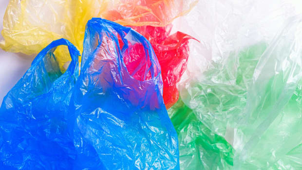 single-use-plastics-and-companies-with-solutions