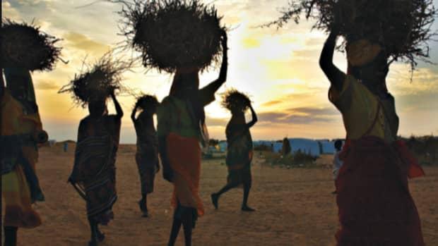 empowerment-program-for-rural-women-in-forestry