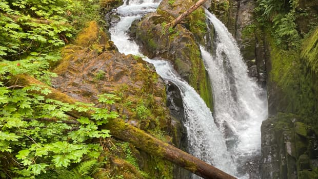my-summertime-destination-sol-duc-at-the-olympic-national-park