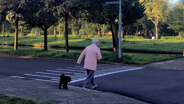 walking-and-talking-human-novocain