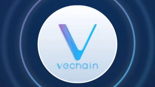 vechain-vet-explained