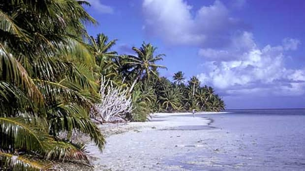 mt-desert-island-discs-which-disc-would-you-save-from-the-waves