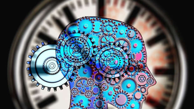 wheels-of-life-by-the-clock