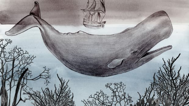 should-you-read-moby-dick