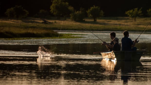fishing-with-bread-fishing-rigs