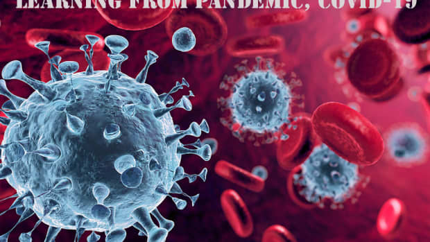learning-from-pandemic-covid-19