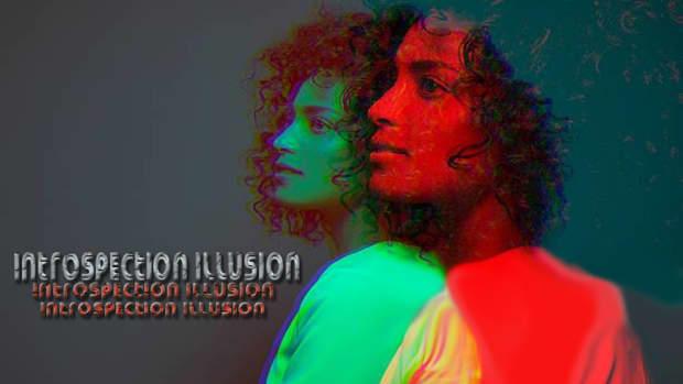 introspection-illusion
