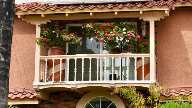 how-to-choose-outdoor-plants-for-front-back-balconies