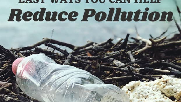 10-ways-you-can-help-reduce-pollution