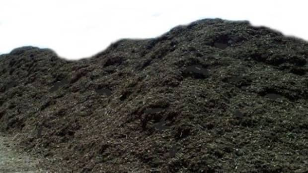 how-dispose-old-potting-soil